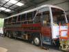 cols-bus-010