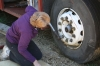 mary-hard-a-work-wheel