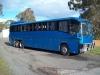 blue-denning-landseer-coach-4-resize